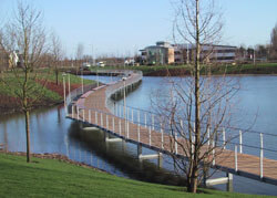 Ekki Hardwood Timber Boardwalk at Cambridge Research Park, Ely Rd, Waterbeach, Cambridge CB25 9TF