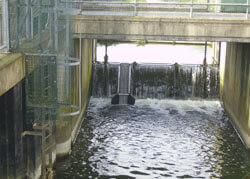Fix Weir mounted Elver Pass in Lincoln